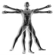 Análisis de la Composición del Cuerpo